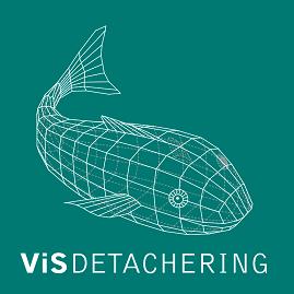 ViS Detachering logo